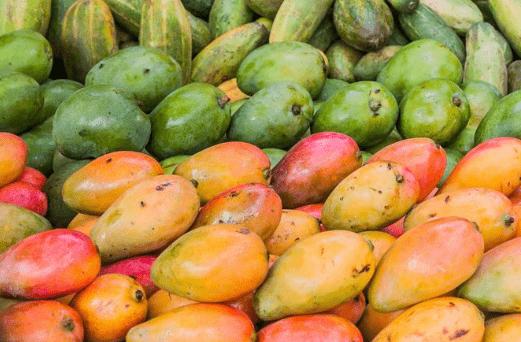 mango afrykańskie działanie