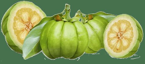 Wygląd owocu