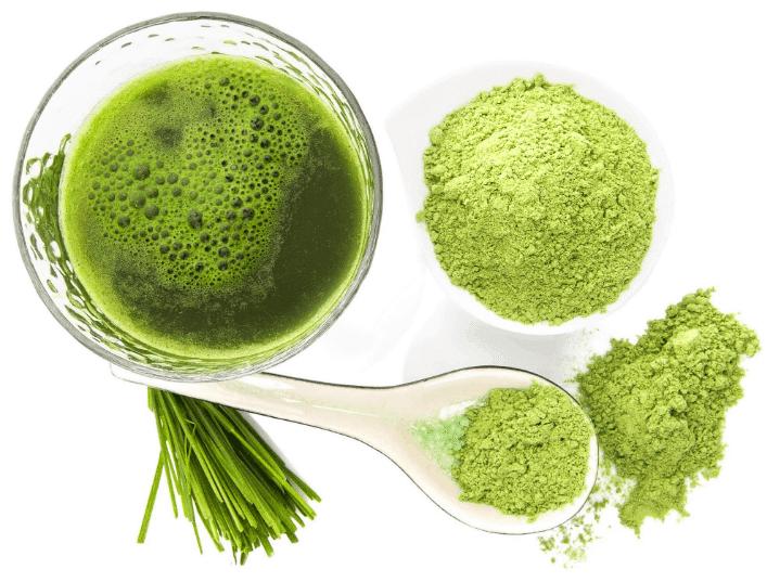 zielony jęczmień - jak sprzyja odchudzaniu